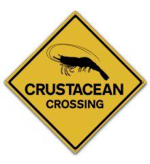 Crustacean Crossing