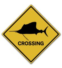 Sailfish Crossing