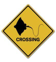 Stingray Crossing