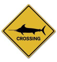 Swordfish Crossing