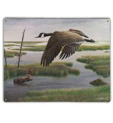 Wetlands and Wilds