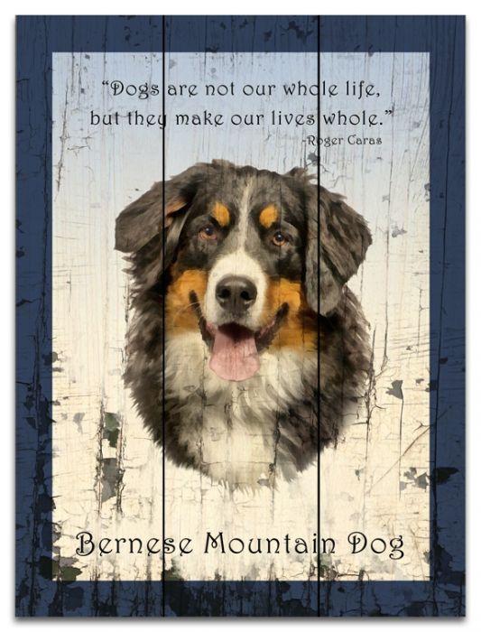 Bernese Mountain Dog 18x24 Wood Plank Sign