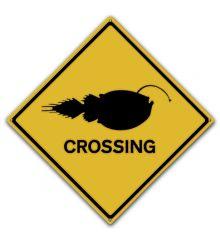 Angler Fish Crossing