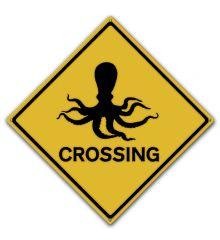 Octopus Crossing