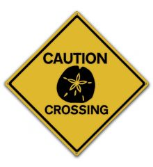 Sand Dollar Crossing