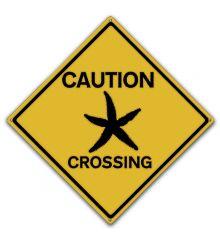 Starfish Crossing