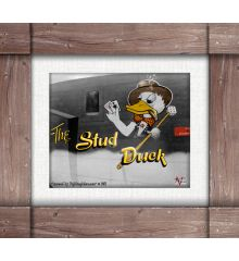 Stud Duck