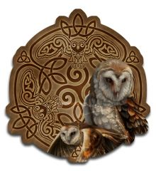 Celtic Owl 24