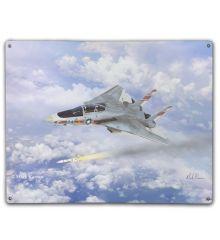 F-14 Tomcat VF-1