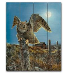 Night Owl 12x15 Planked Wood Sign